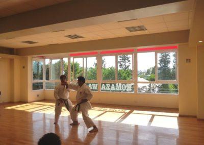 karate-demostracion