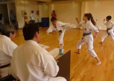 karate-examen-3